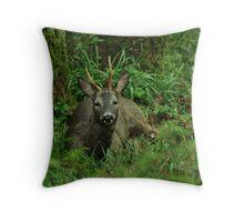 Roebuck Throw Pillow
