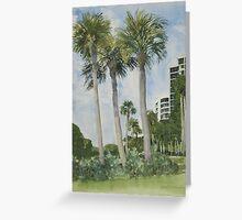 Naples Florida, Palms Greeting Card