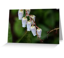 Small Bells Greeting Card