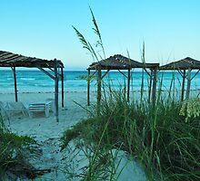 Cuba Beach by Vanessa Truter
