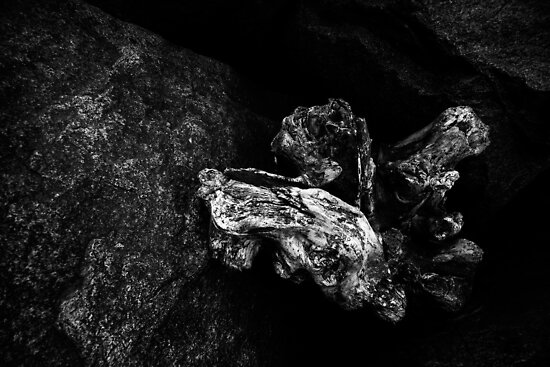 Wood and Stone by PaulBradley
