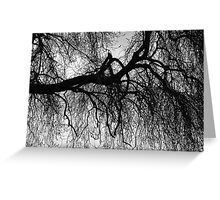 Under The Winter Willow Greeting Card