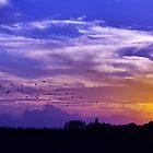 Texas Sunset by Thomas Eggert