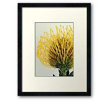 Sun Ball Framed Print