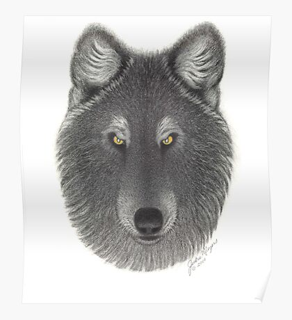 SteppinWolf in Phase Poster