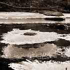 Abstract Ice on the Rappahannock River - 9 by Stephen Graham