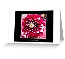 Gorgeous Red Flower Greeting Card