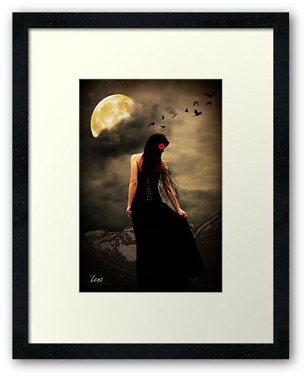 My Maria by George Lenz