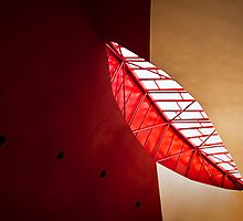 Architectural Leaf by amko