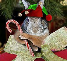 Christmas Bunny Rabbit Elf by jkartlife