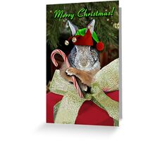 Christmas Bunny Rabbit Elf Greeting Card
