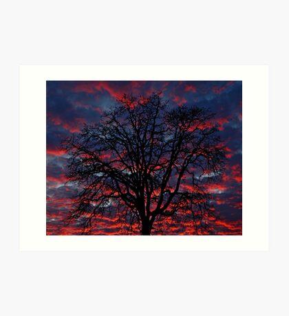 Lake Oswego Sunset Art Print