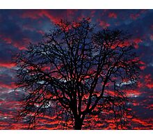 Lake Oswego Sunset Photographic Print