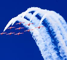 Snowbirds by j Kirk Photography                      Kirk Friederich