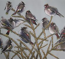 Treetop Gathering [Bohemian Waxwings] by Sally Ford