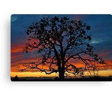 New Year Sunset Canvas Print