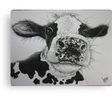 Anyone for Milk? Canvas Print