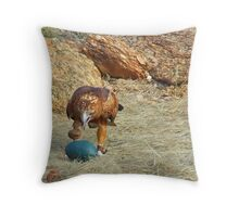 Clever Raptor Throw Pillow