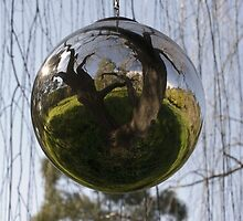 Sphere-willow by Carly Haddad