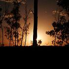 Desert sun set by Carly Haddad