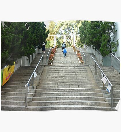 people walking up steps in beautiful exotic park Poster