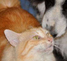 best friends by jainiemac