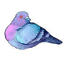 Rat Bird (textless) Photographic Print