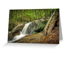 Autumn Afternoon at Olinda Falls Greeting Card