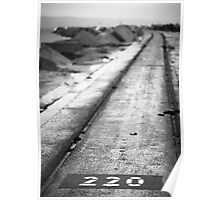 220 revisited Poster
