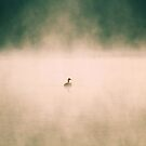 Foggy Goose by goldnzrule