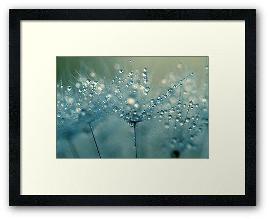 Shower Blue by Sharon Johnstone