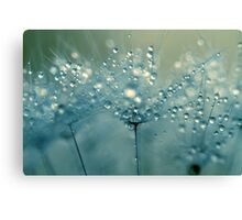 Shower Blue Canvas Print
