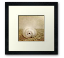 Sable Framed Print