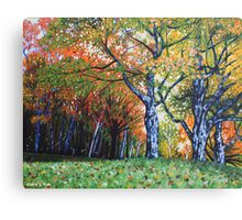 'Autumn Trees Along Bass Lake'  Canvas Print