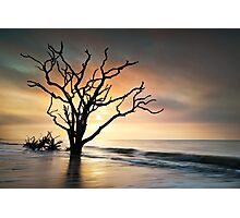 Boneyard Sunrise - Botany Bay, Edisto Island SC Photographic Print