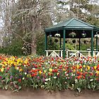 Gardeners Paradise by 3Cavaliers