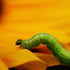 a bugs life by Ingz