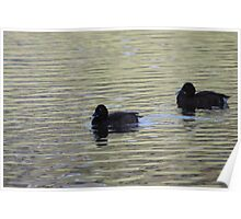 Simply silvery scene with ducks Poster