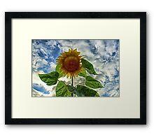 Surreal Bloom Framed Print