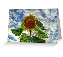Surreal Bloom Greeting Card