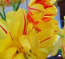 Stripy Tulips by klarutshka