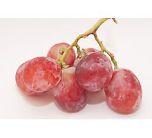 Red grape Photographic Print