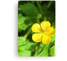 Build Me Up, Buttercup Canvas Print