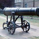 Cannon by Edward Denyer