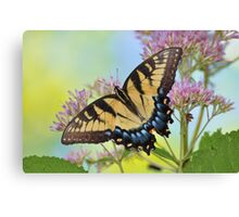Butterfly at the Moonville Tunnel Canvas Print