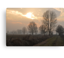 Winter Trees in the Crepuscle Canvas Print