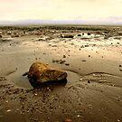 Sand Bay by Samantha Higgs
