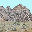 The Bungle Bungles W.A by robert murray