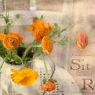 Ranunculus Orange by JulieLegg
