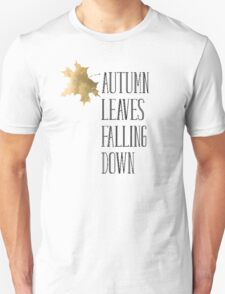 Taylor Swift Lyrics Autumn Leaves Falling Down T-Shirt